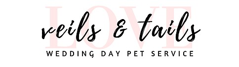 Adelaide wedding pets